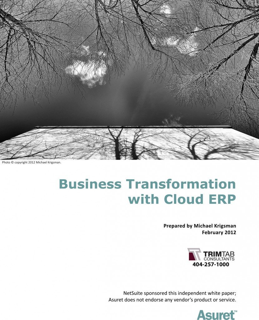 Cloud_ERP_Business_Transformation_TrimtabConsultants-1